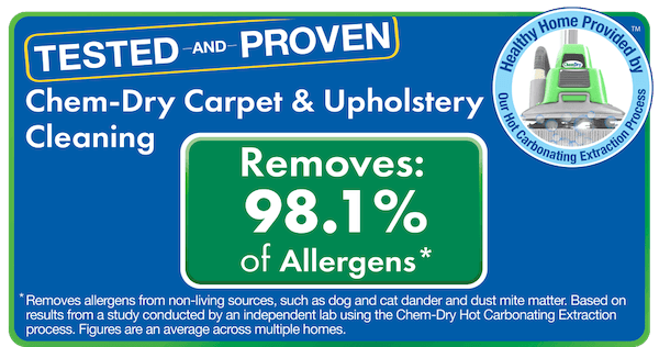 best carpet cleaning for allergies