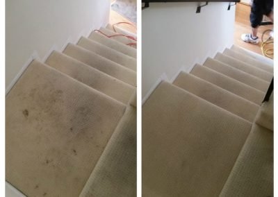 before and after carpet cleaning lakewood ca