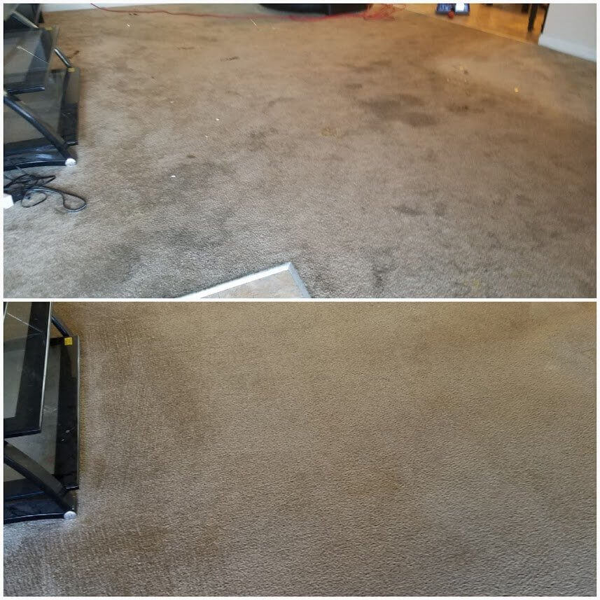 Before and after upholstery cleaning in Lakewood, CA