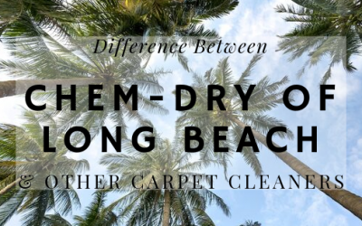 Difference Between Chem-Dry & Other Carpet Cleaners