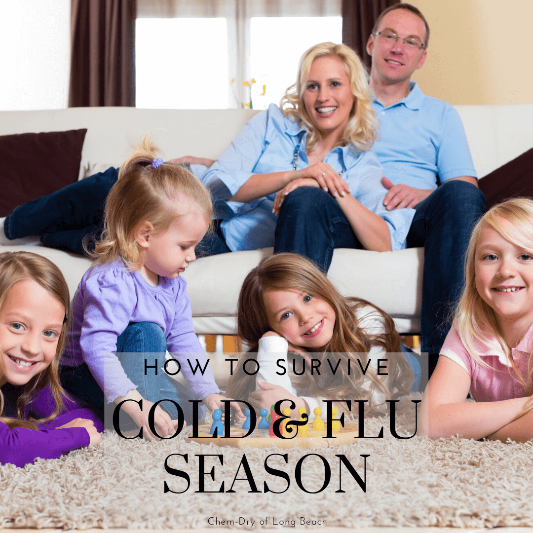 How To Survive Cold & Flu Season
