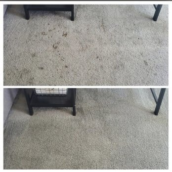 Before and after pet urine removal in Signal Hill, CA