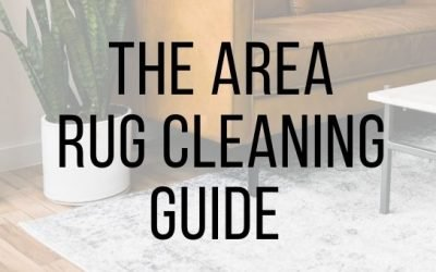 The Area Rug Cleaning Guide