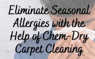 Eliminate Seasonal Allergies with the Help of Chem-Dry Carpet Cleaning