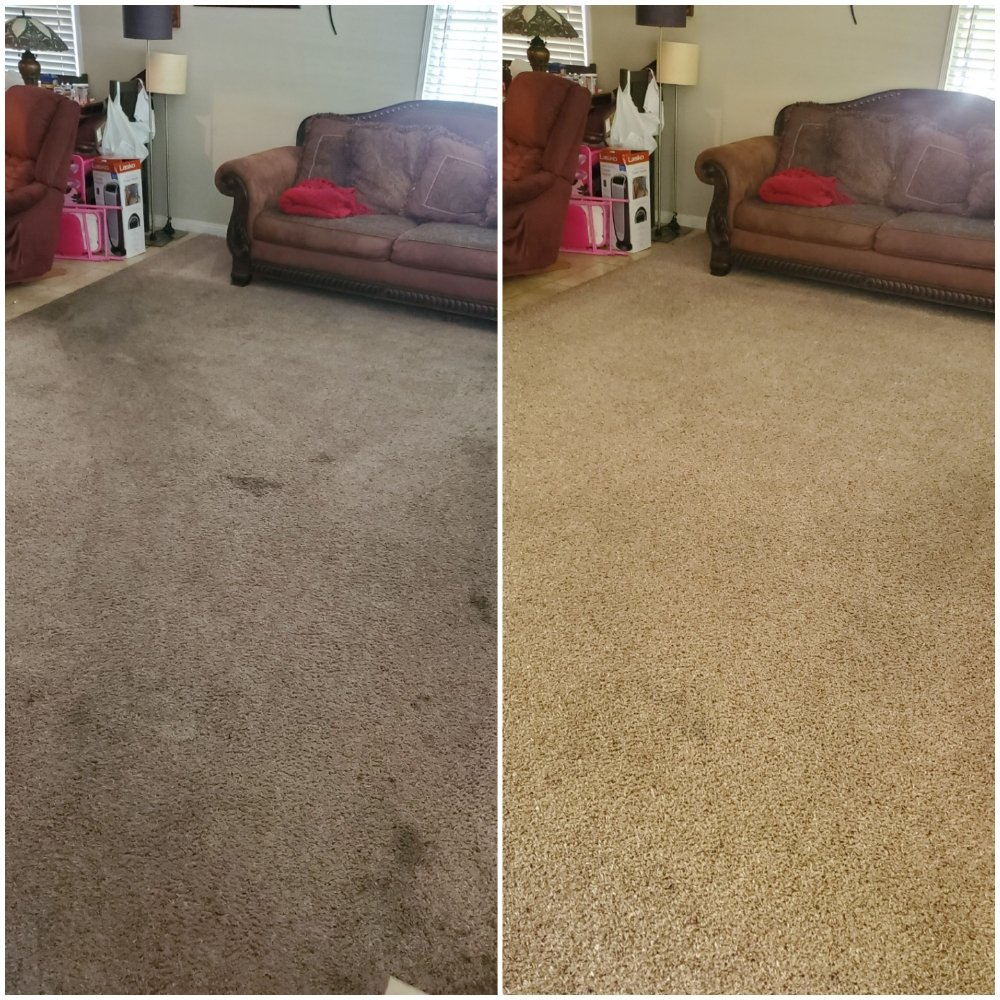 before and after carpet cleaning signal hill ca