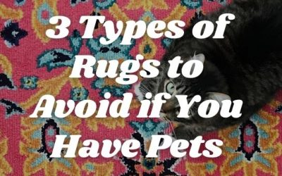 3 Types of Rugs to Avoid if You Have Pets